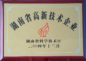 2004年度湖南省高新技术企业2.JPG