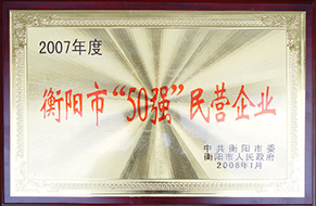 2008年度衡阳市50强民营企业(2007年).JPG