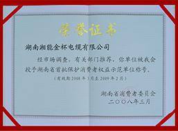 2008年度湖南省首批保护消费者权益示范单位称号(2008-2009年).JPG