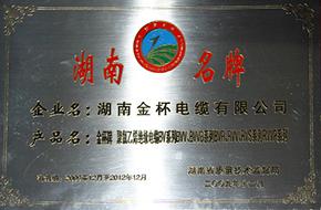 2009年度湖南名牌1.JPG