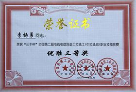 """2011年度李杨勇""""三丰杯""""优胜三等奖.jpg"""