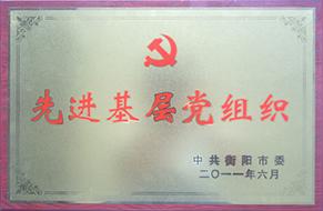 2011年度先进基层党组织.JPG