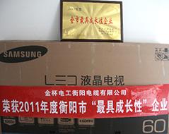2012年度全市最具成长性企业(2011年)1.jpg