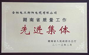 2013年度湖南省质量工作先进集体.jpg